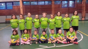 minivolley 2